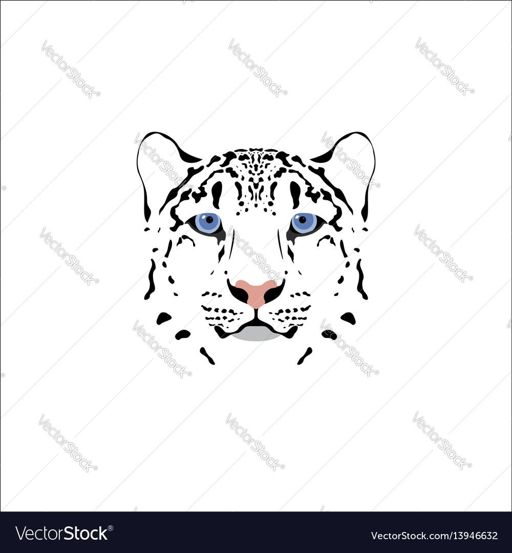 A snow leopard head vector image