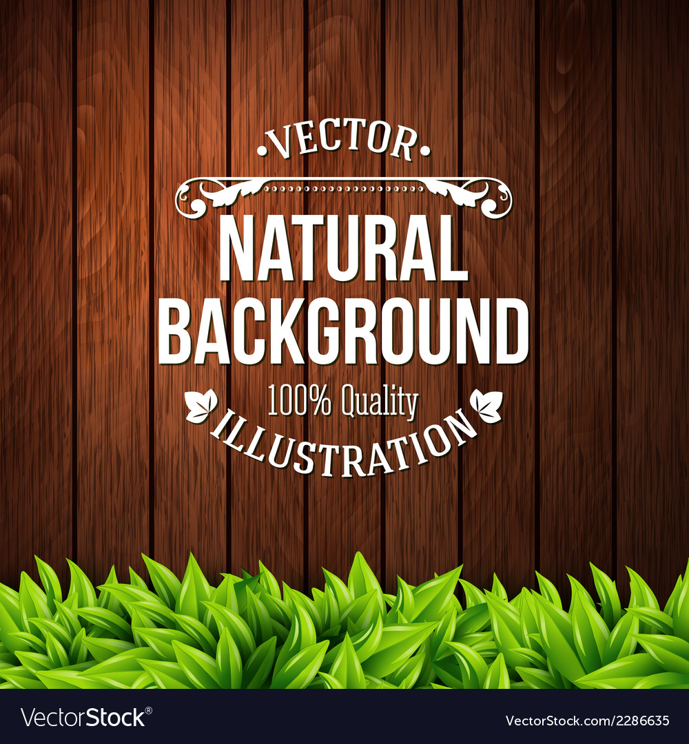 Natural background with wooden planks and leaves vector image