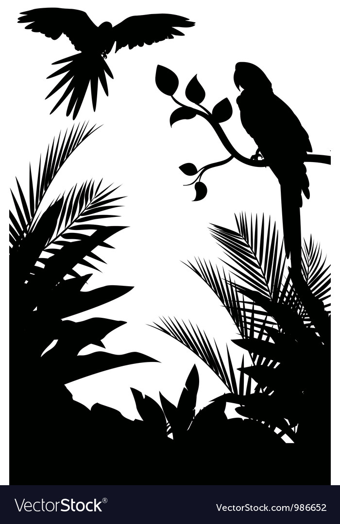 Macaw and plant silhouette vector image