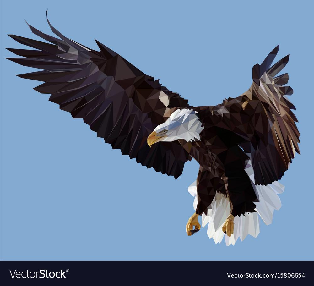 Condor vector image