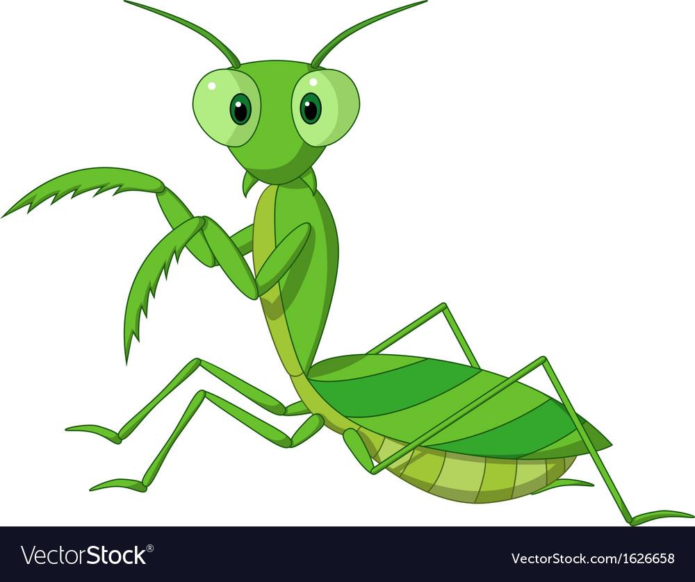 Cute praying mantis cartoon Royalty Free Vector Image
