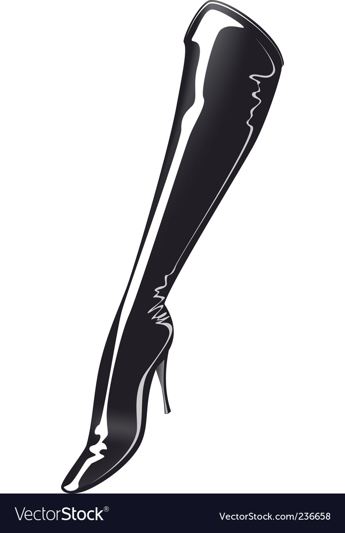 Sexy boots vector image