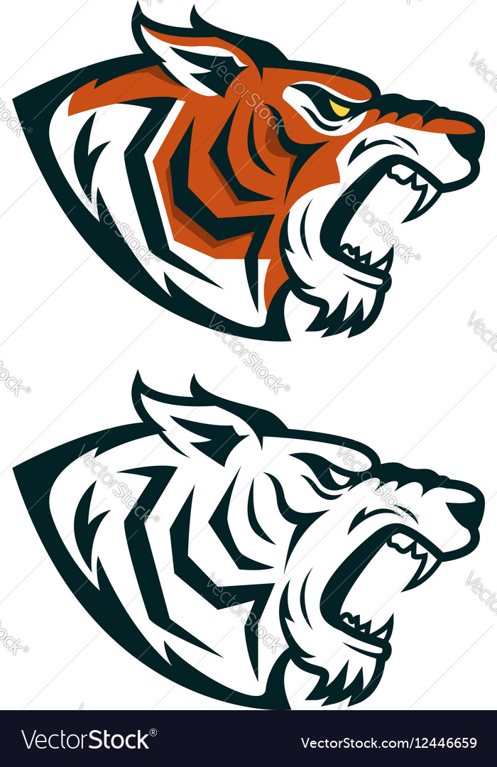 Tiger mascot Head of angry tiger isolated on vector image
