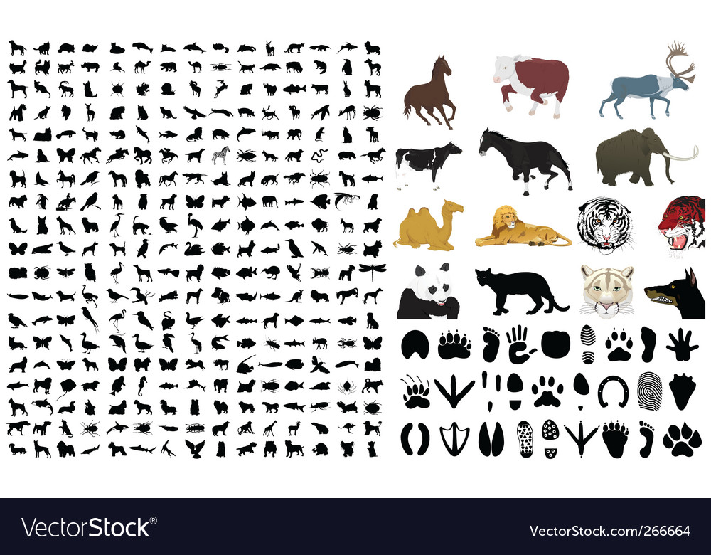 silhouettes of animals. Of Silhouettes Of Animals