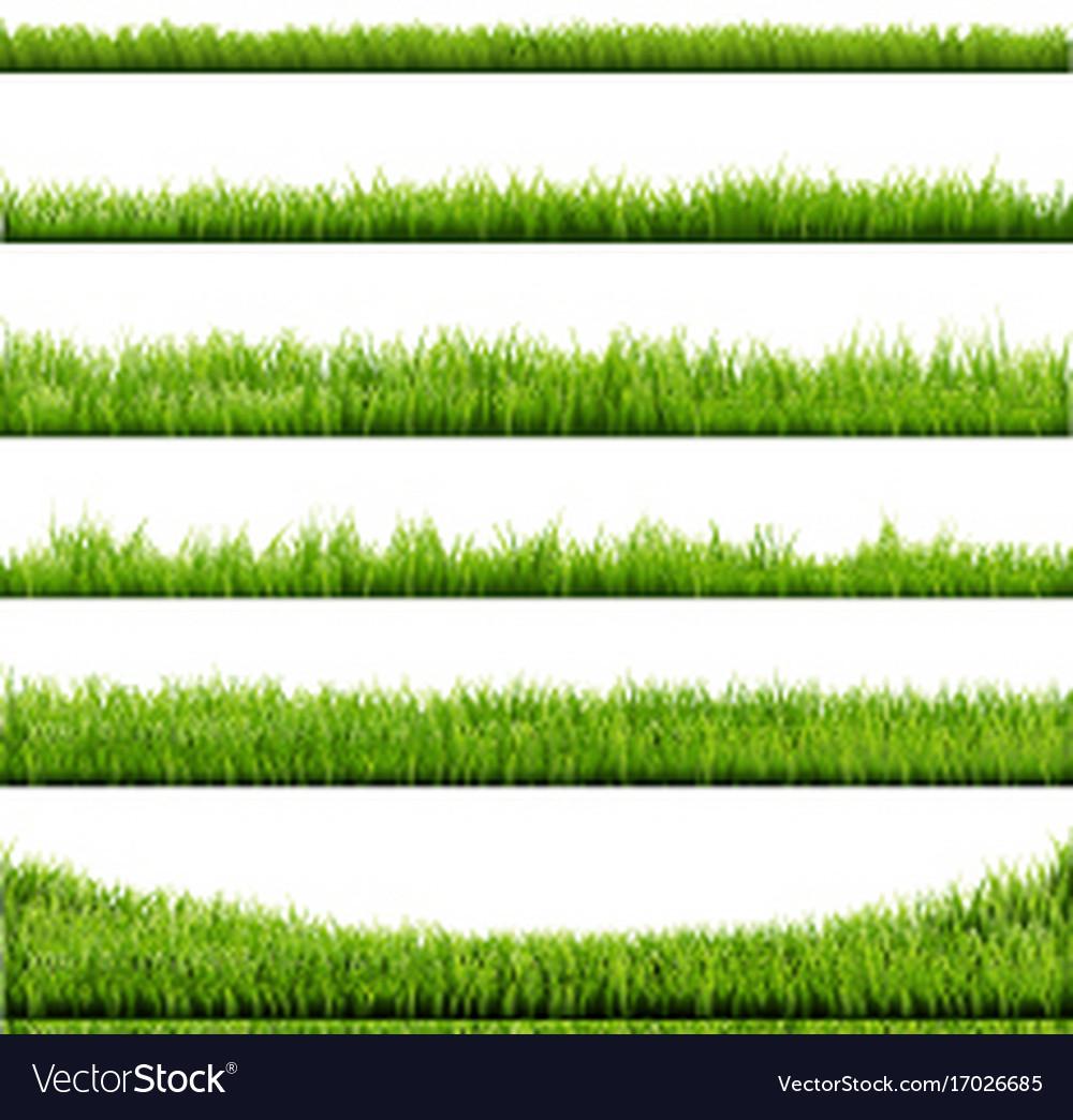 Grass frame vector image