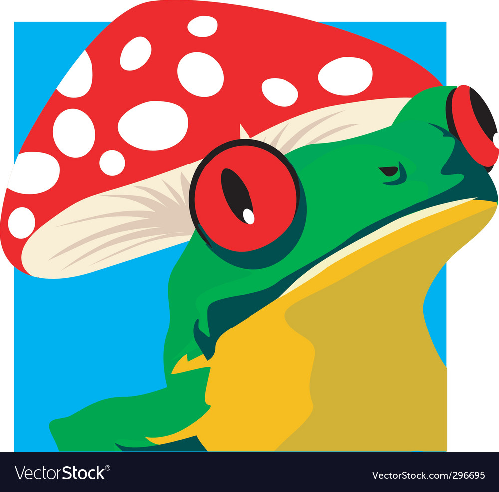 Frog and mushroom vector image