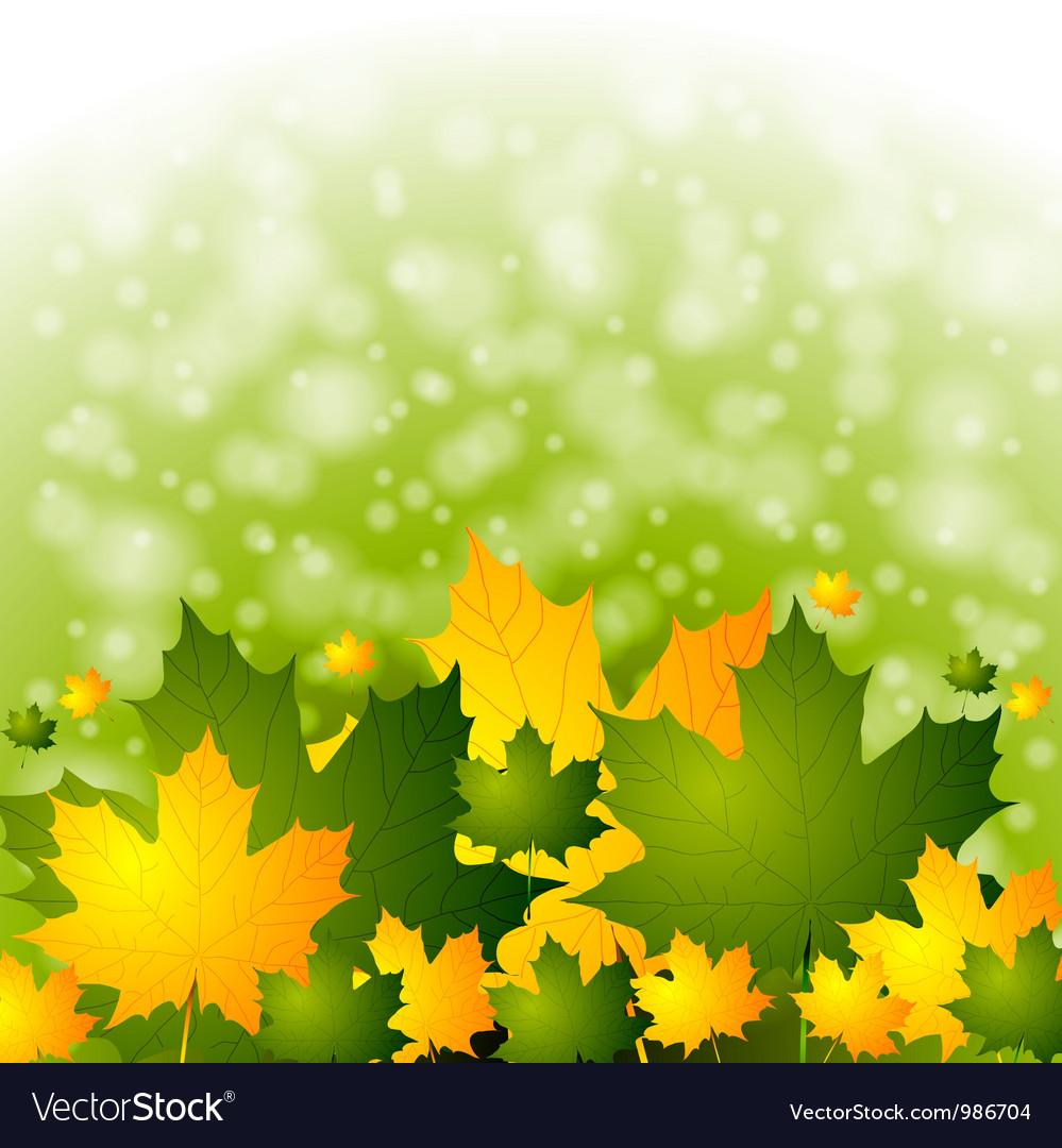 Colourful autumn backdrop vector image