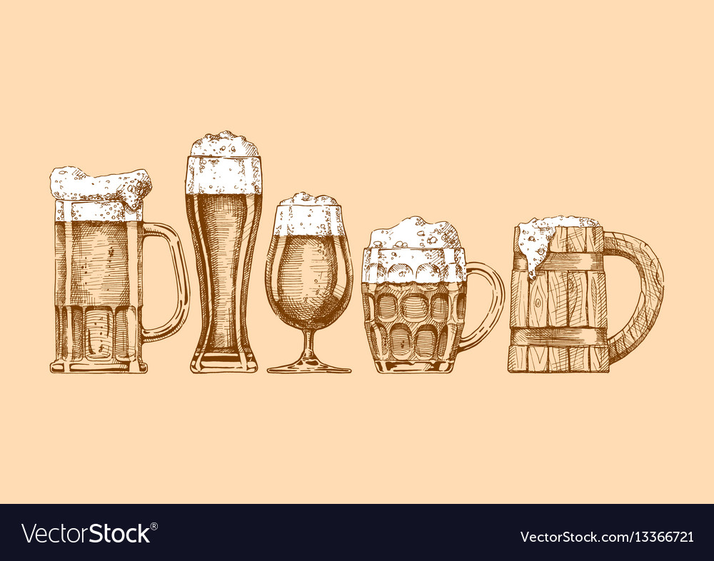 Set of beer glasses and mugs vector image