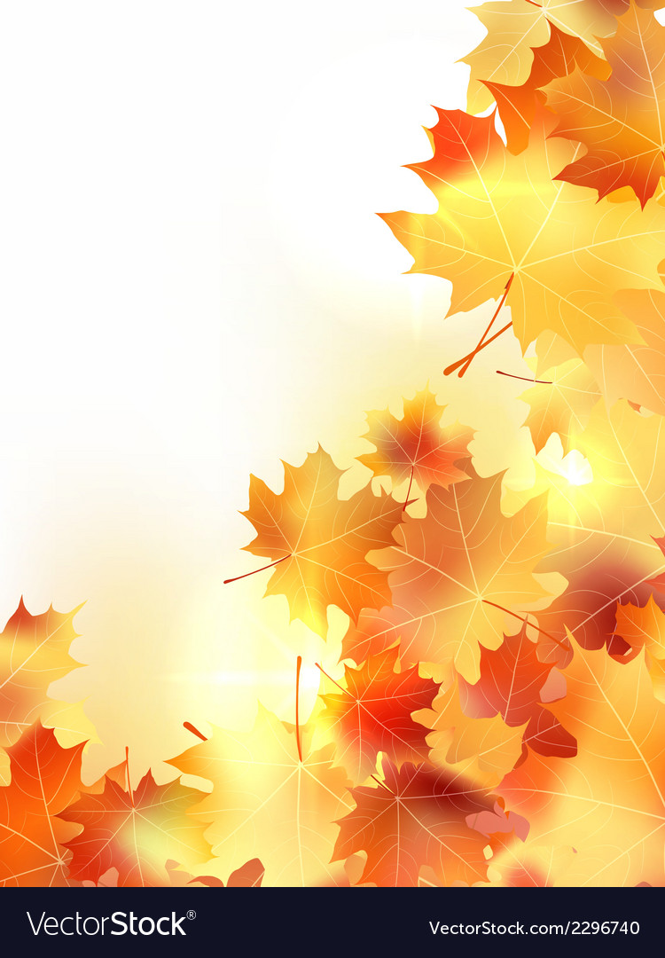 Background with maple autumn leaves plus EPS10 vector image