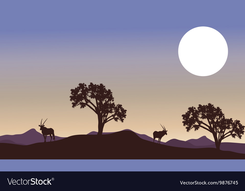 Antelope and full moon landscape silhouette vector image