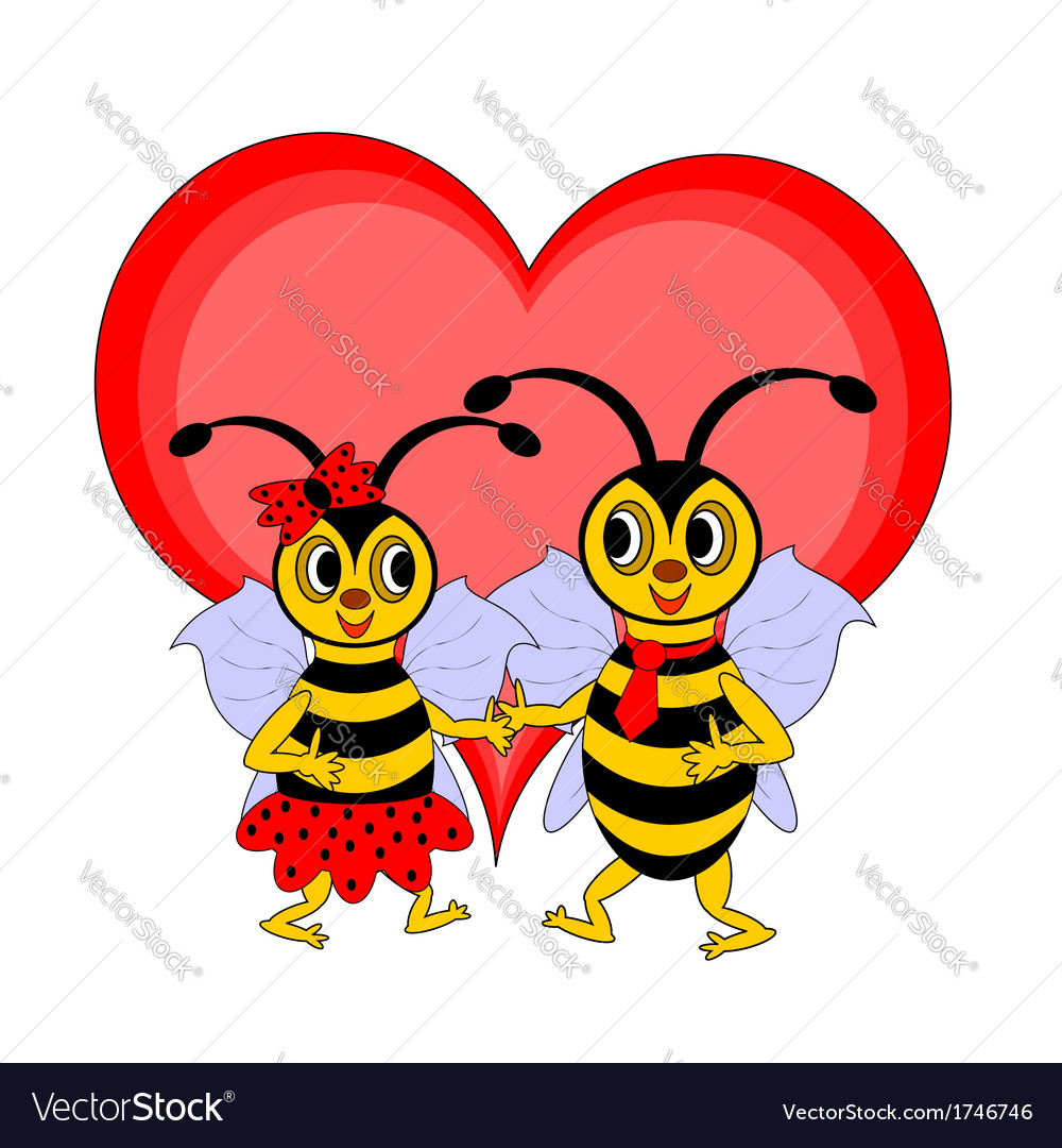 A couple of funny cartoon bees with a red heart vector image