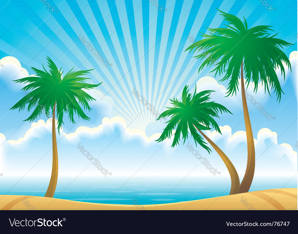 Morning coast vector image