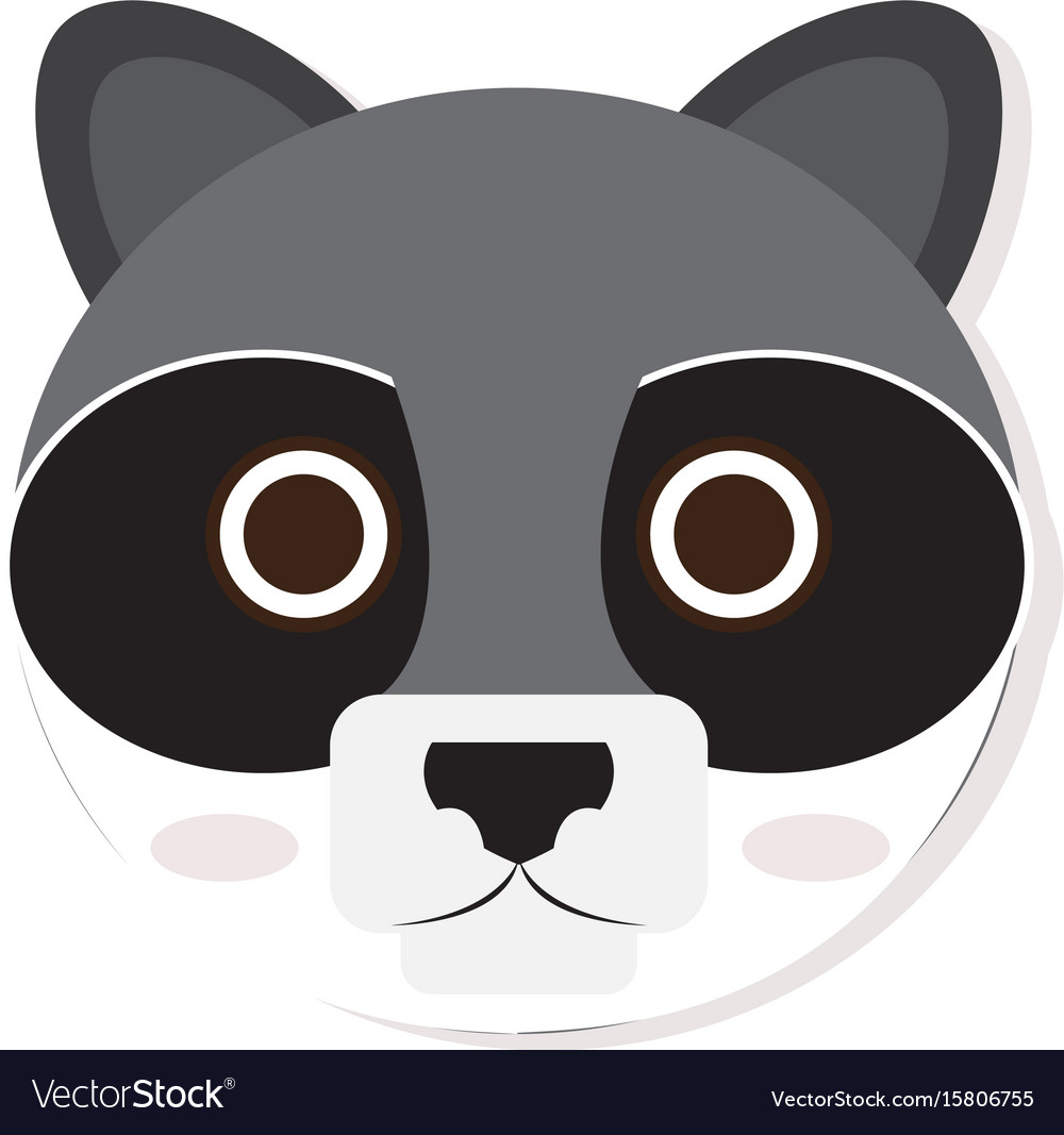 Isolated racoon face vector image