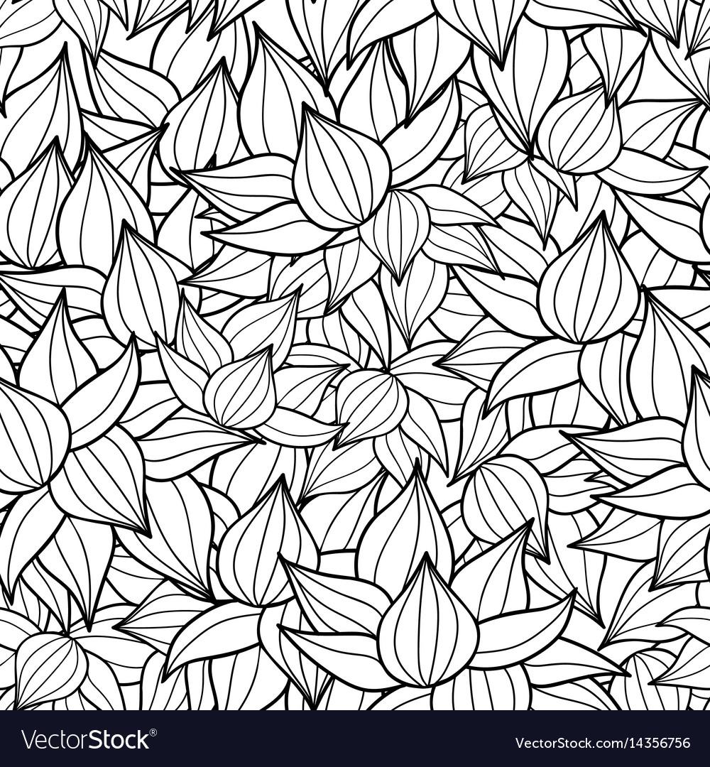 Black drawing succulent plant texture vector image