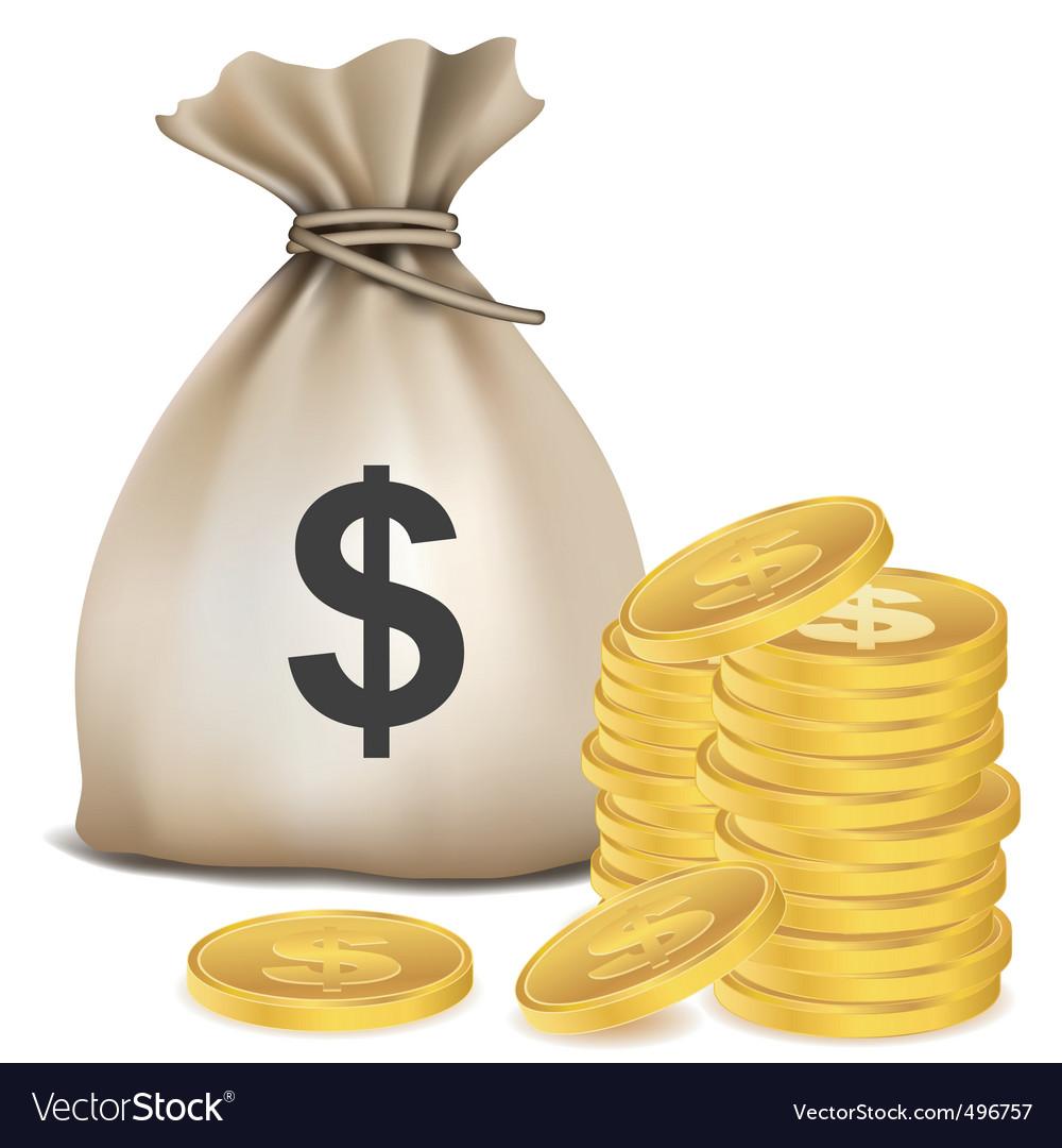 Dollar bag vector image