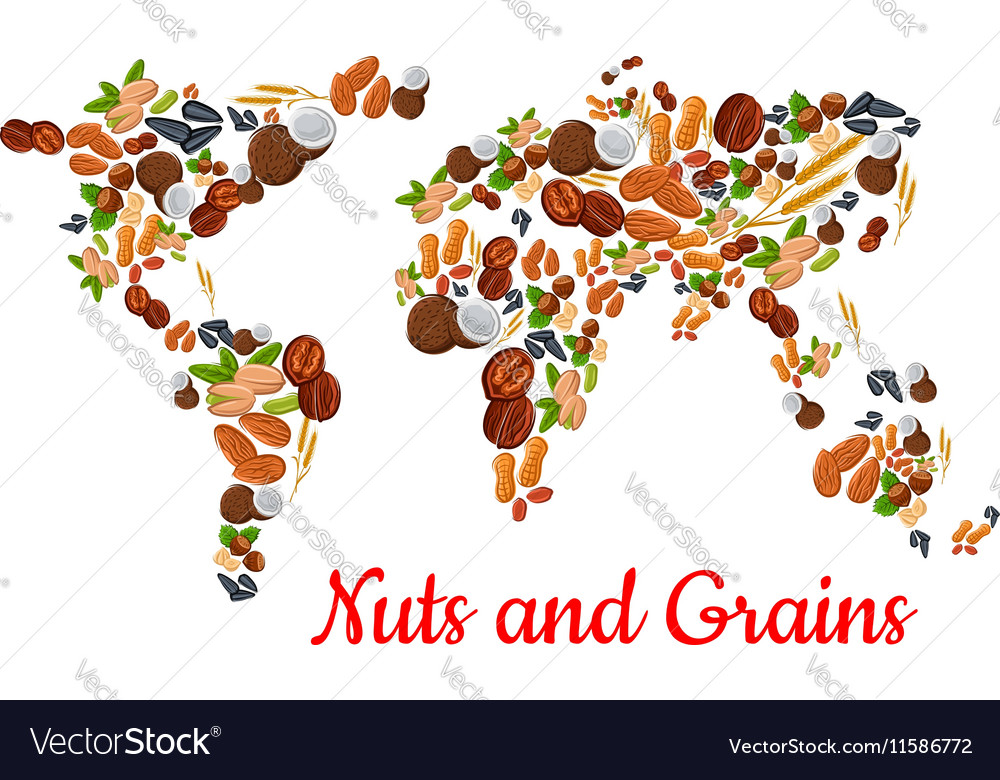 Nuts And Grains In World Map Shape Royalty Free Vector Image - World map shape