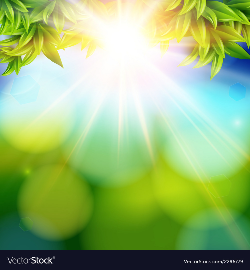 Bright shining sun with lens flare Abstract spring vector image