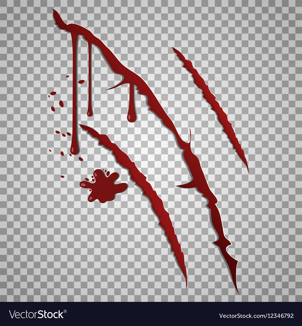 Bloody scratch marks incised wounds with vector image