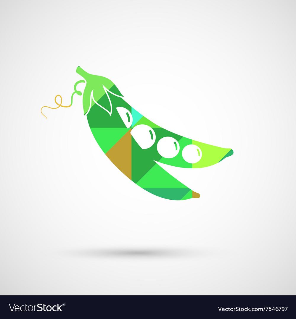 Green Pea of fresh green peas pod vector image