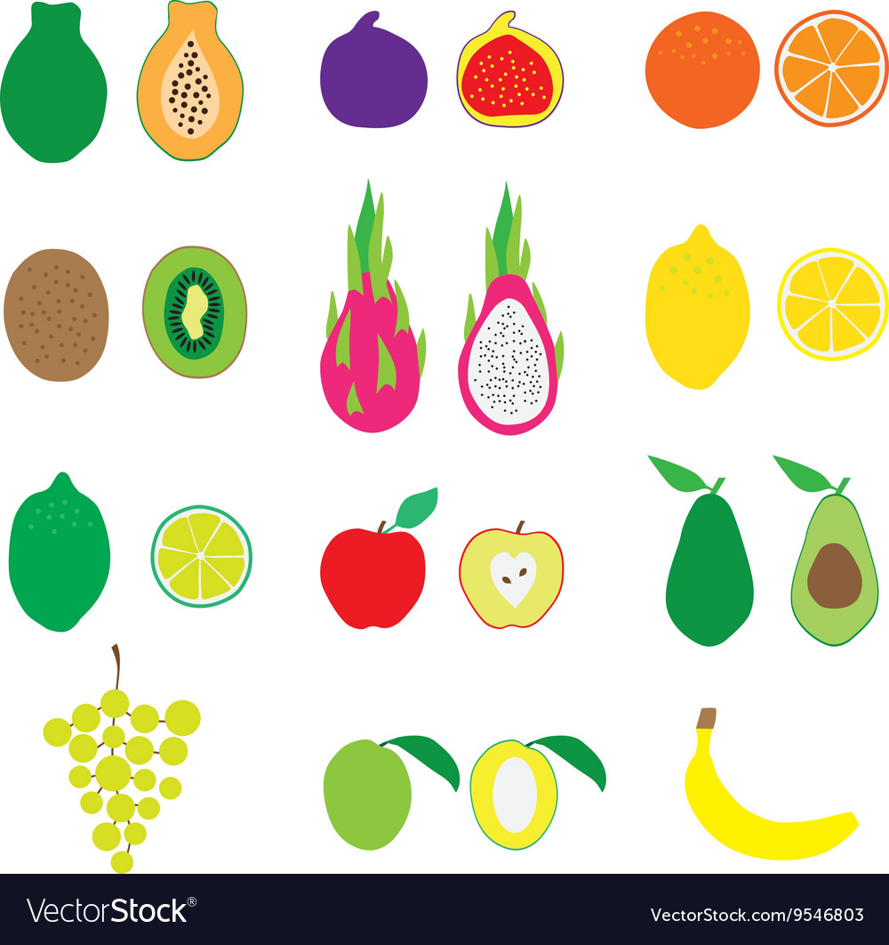 Fruits Big Set Flat Organic vector image