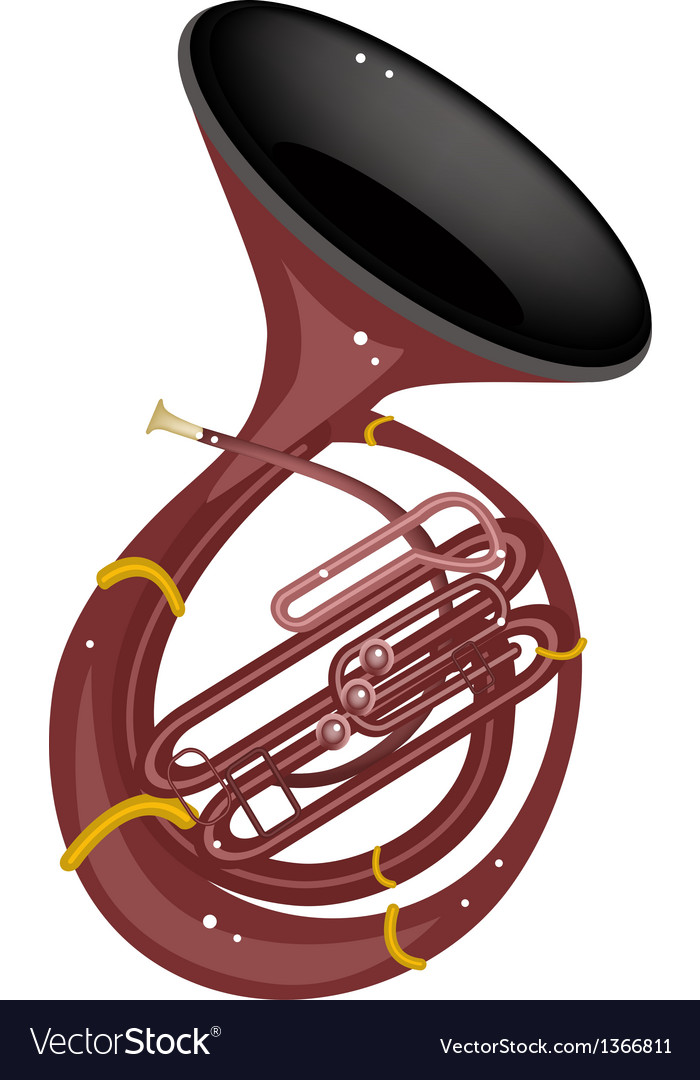 A Musical Sousaphone Isolated on White Background vector image