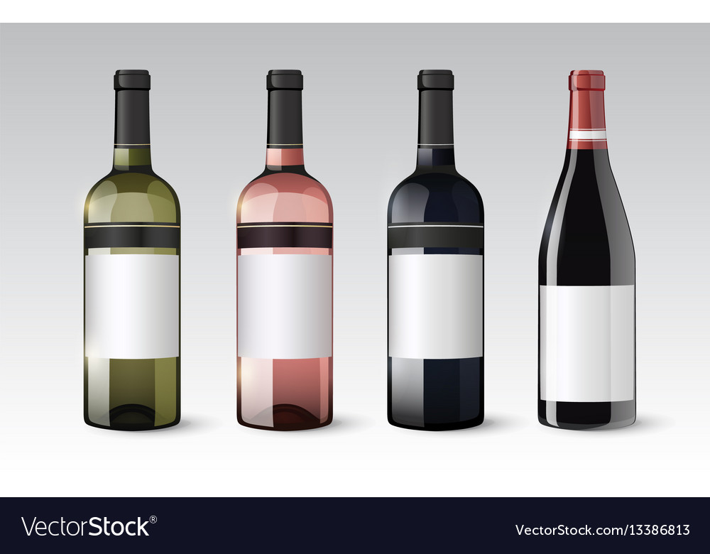 Realistic glass bottles set vector image