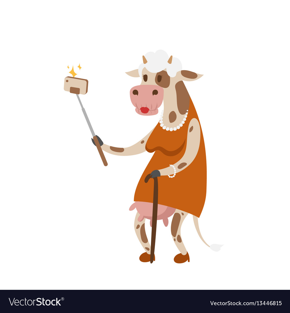 Funny picture cow photographer mamal person take vector image