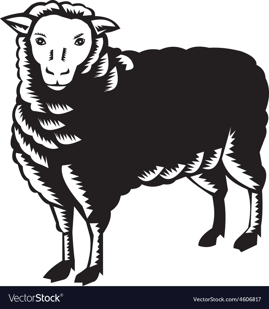 Sheep Side View Woodcut vector image