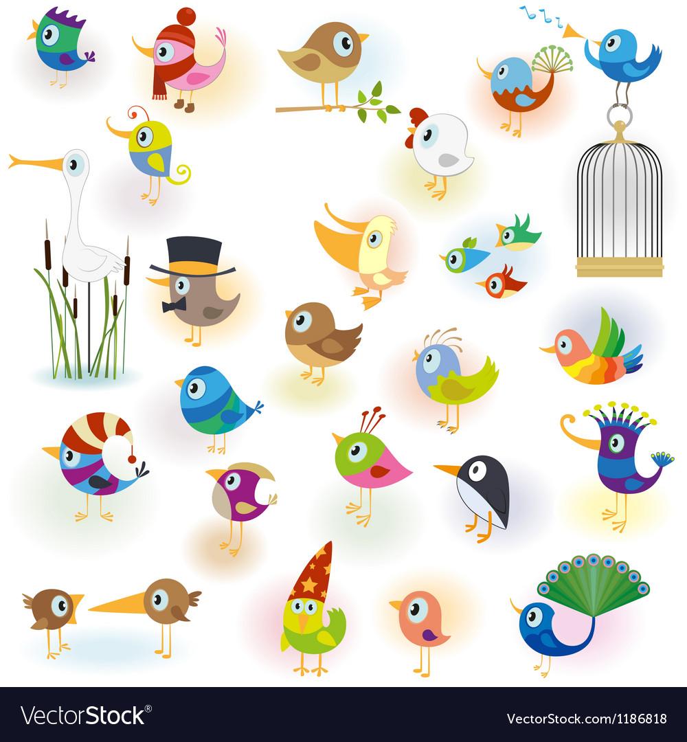 Birds set14 vector image