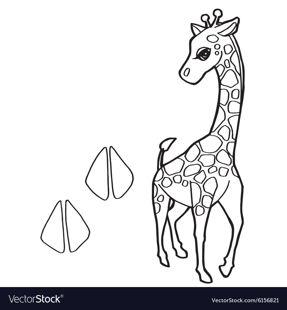 Paw Print With Giraffe Coloring Pages Vector Image