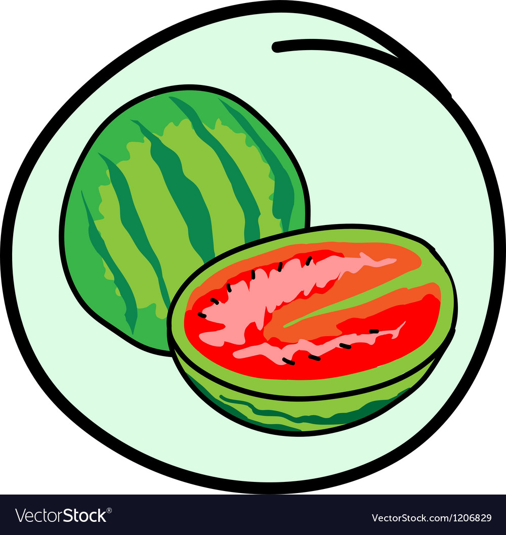 Fresh Green Watermelons on Round Green Background vector image