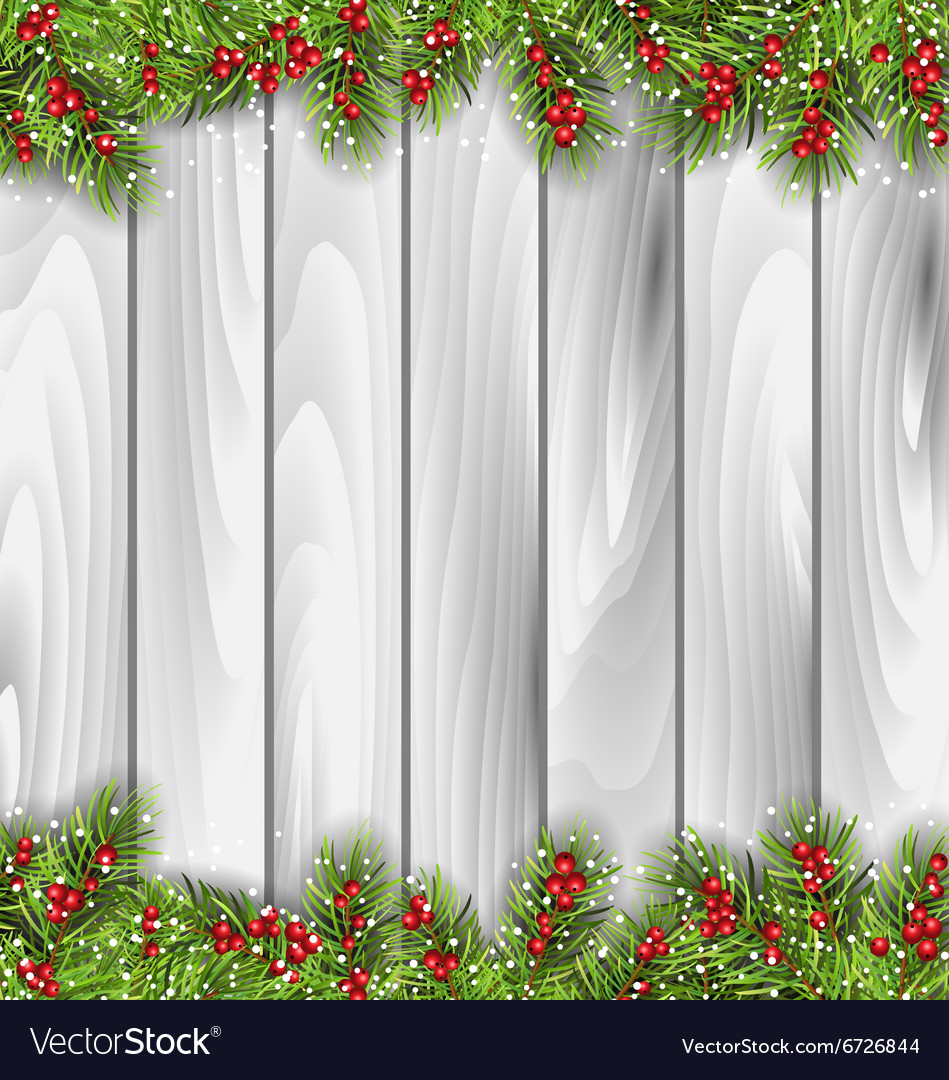 Wooden Background with Fir Branches and Berrie vector image