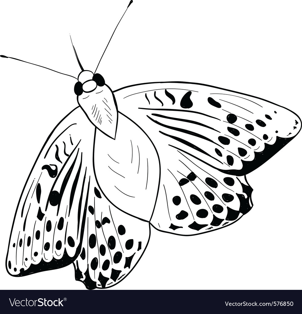 Black silhouette of simple butterfly vector image