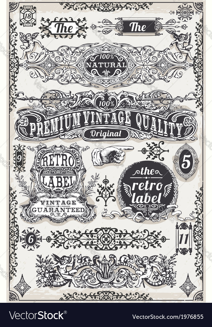 Vintage Hand Drawn Graphic Banners and Labels vector image