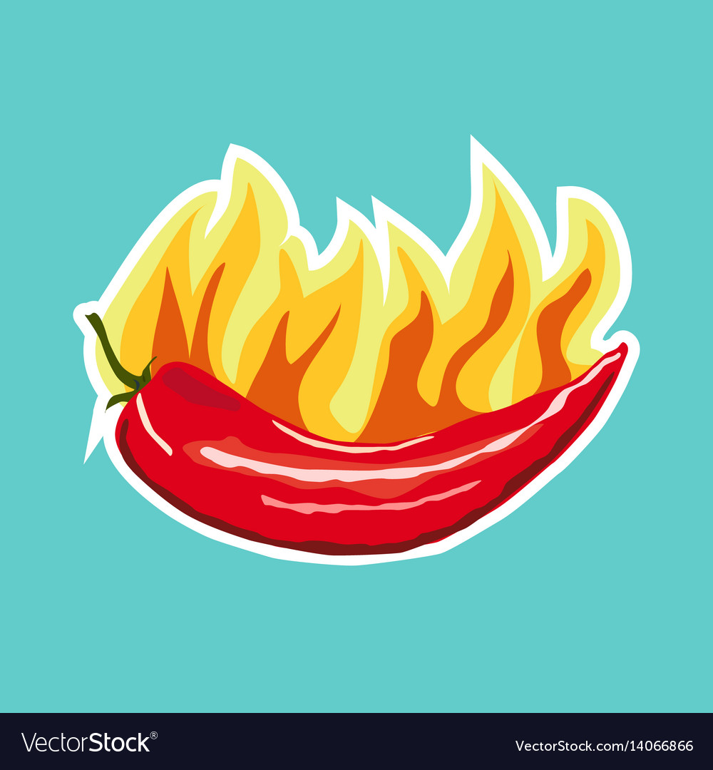Chilli pepper icon sticker flat style vector image
