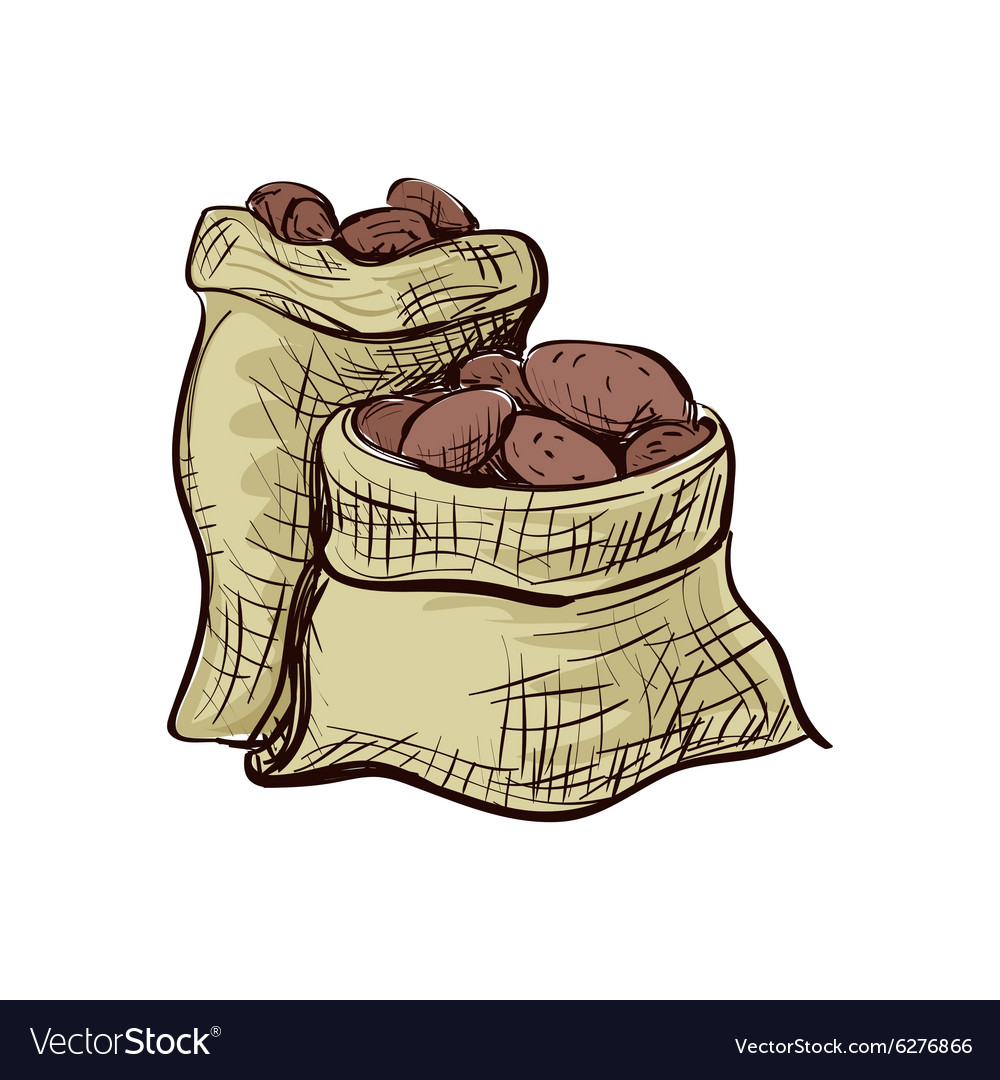 Doodle sack of potatoes vector image
