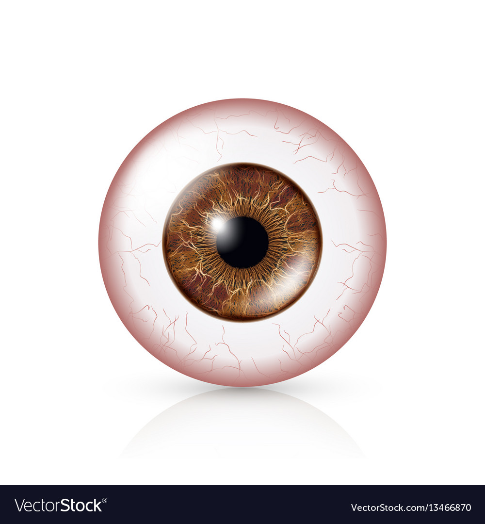 Conjunctivitis red eye human eyeball with vector image