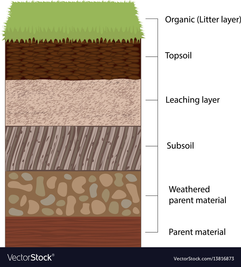 Soil horizons and layers royalty free vector image soil horizons and layers vector image pooptronica Images
