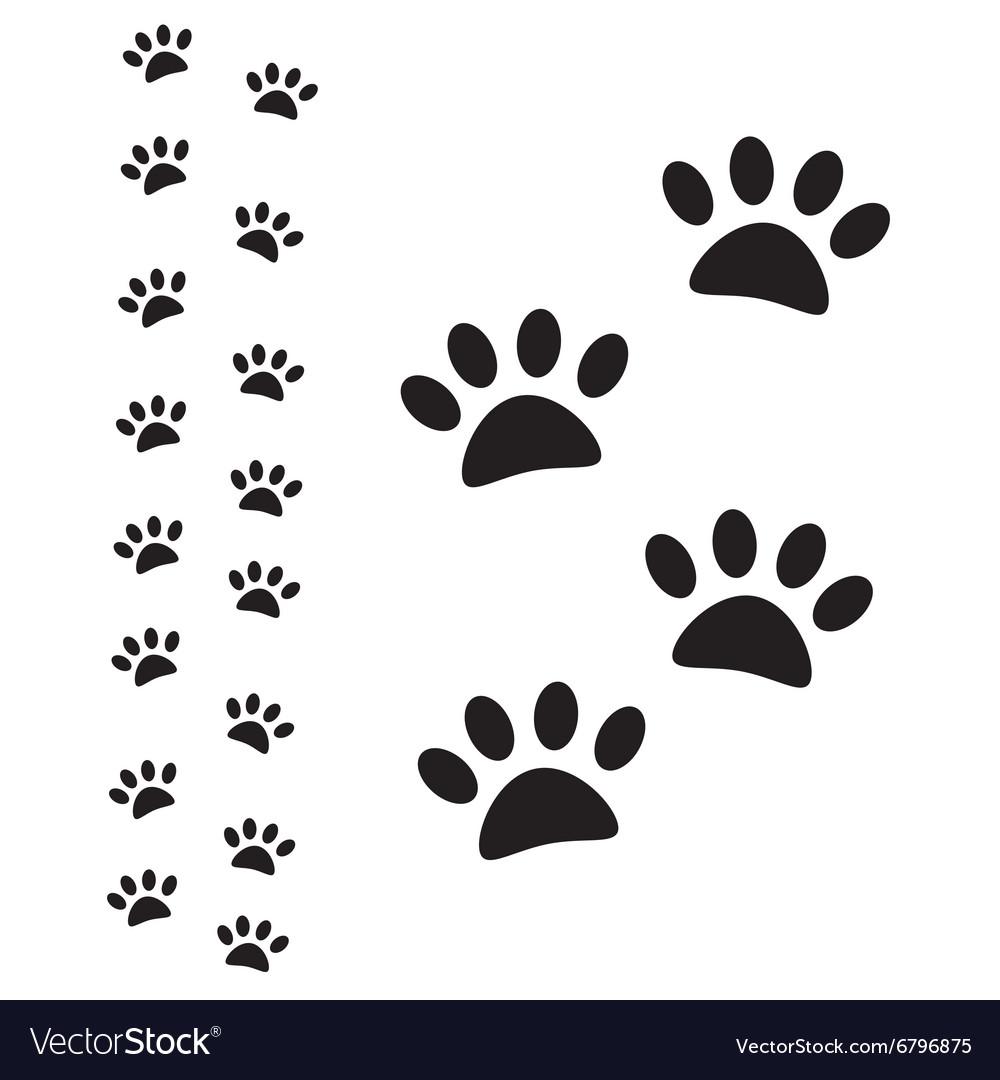 Animal paw path vector image