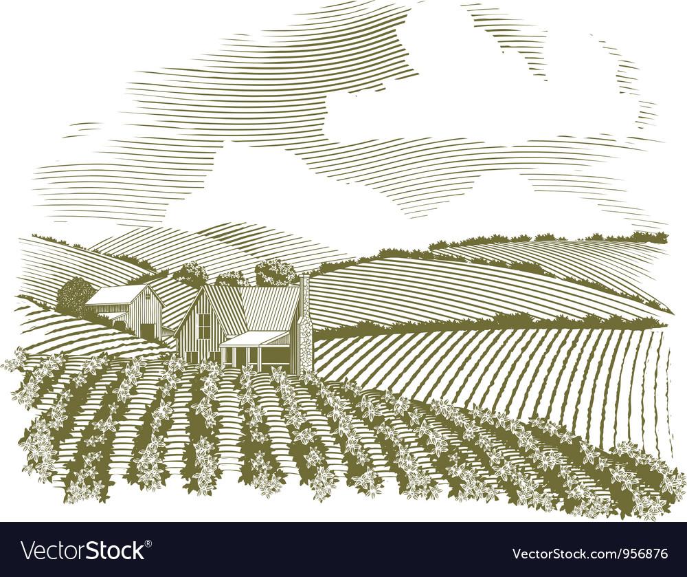 Woodcut Rural Farm House vector image