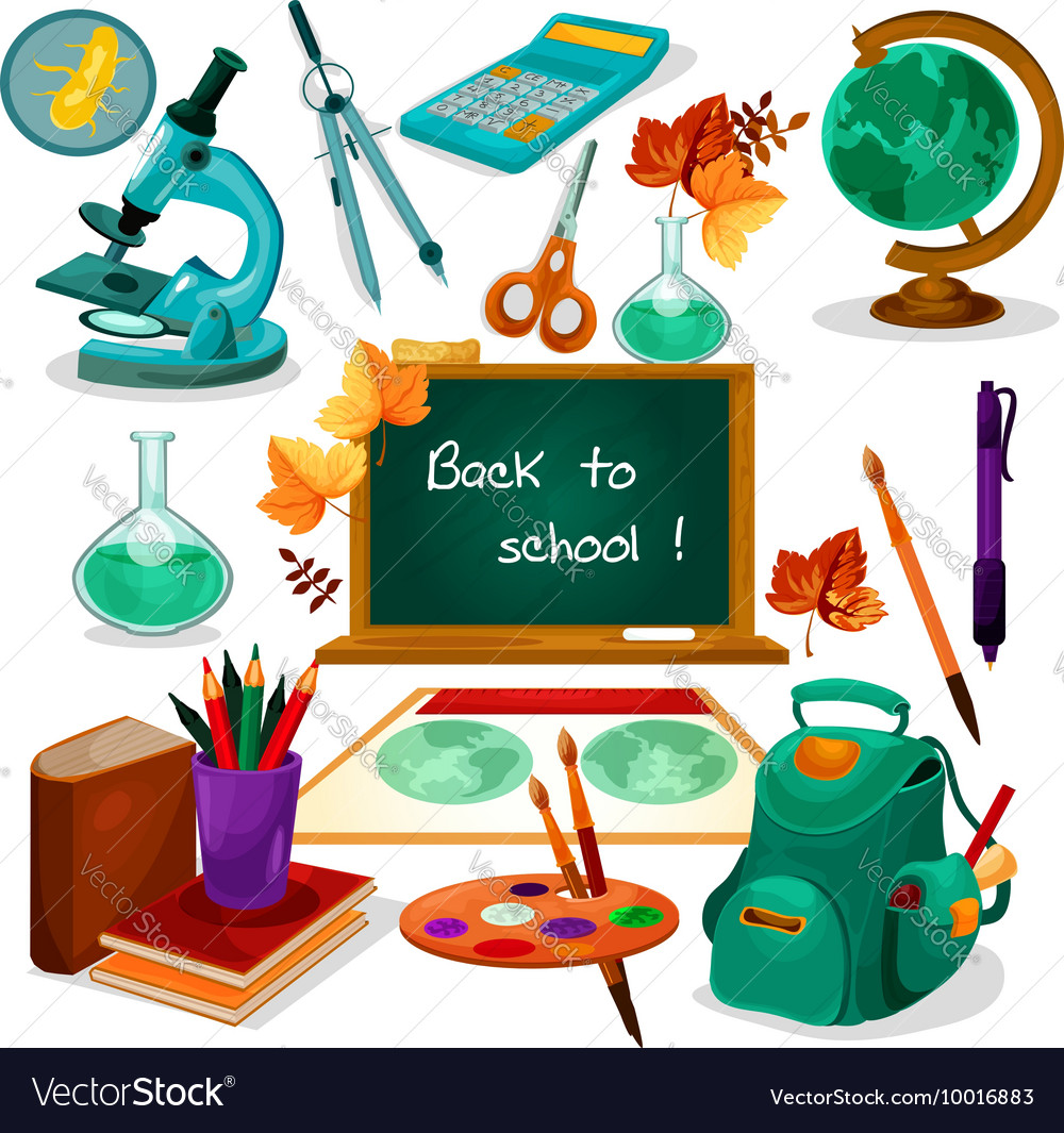 Back to school Supplies and stationery vector image