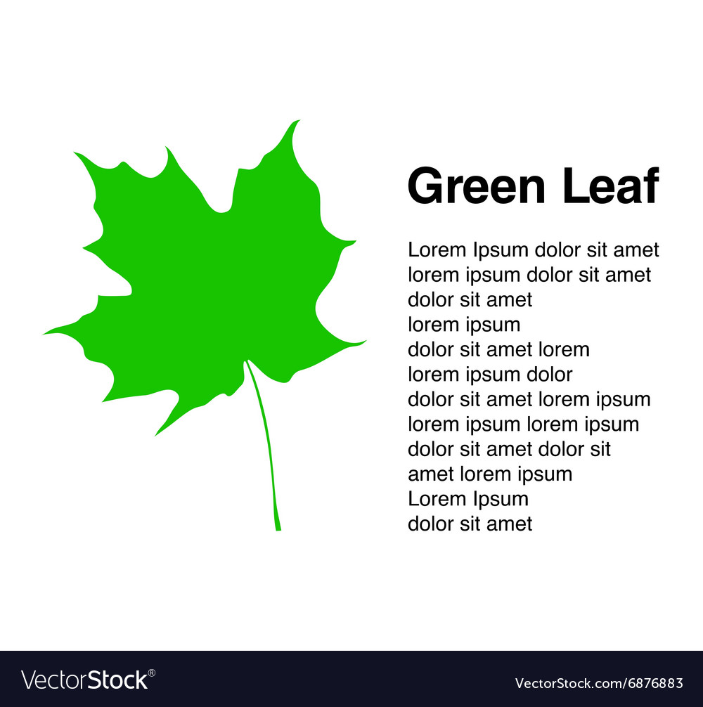 With leaf card background vector image