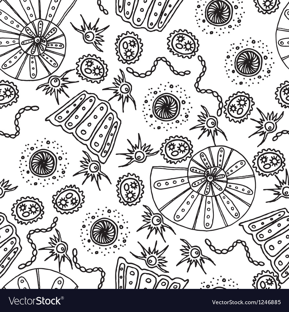 Seamless pattern  Sea shells and animals vector image