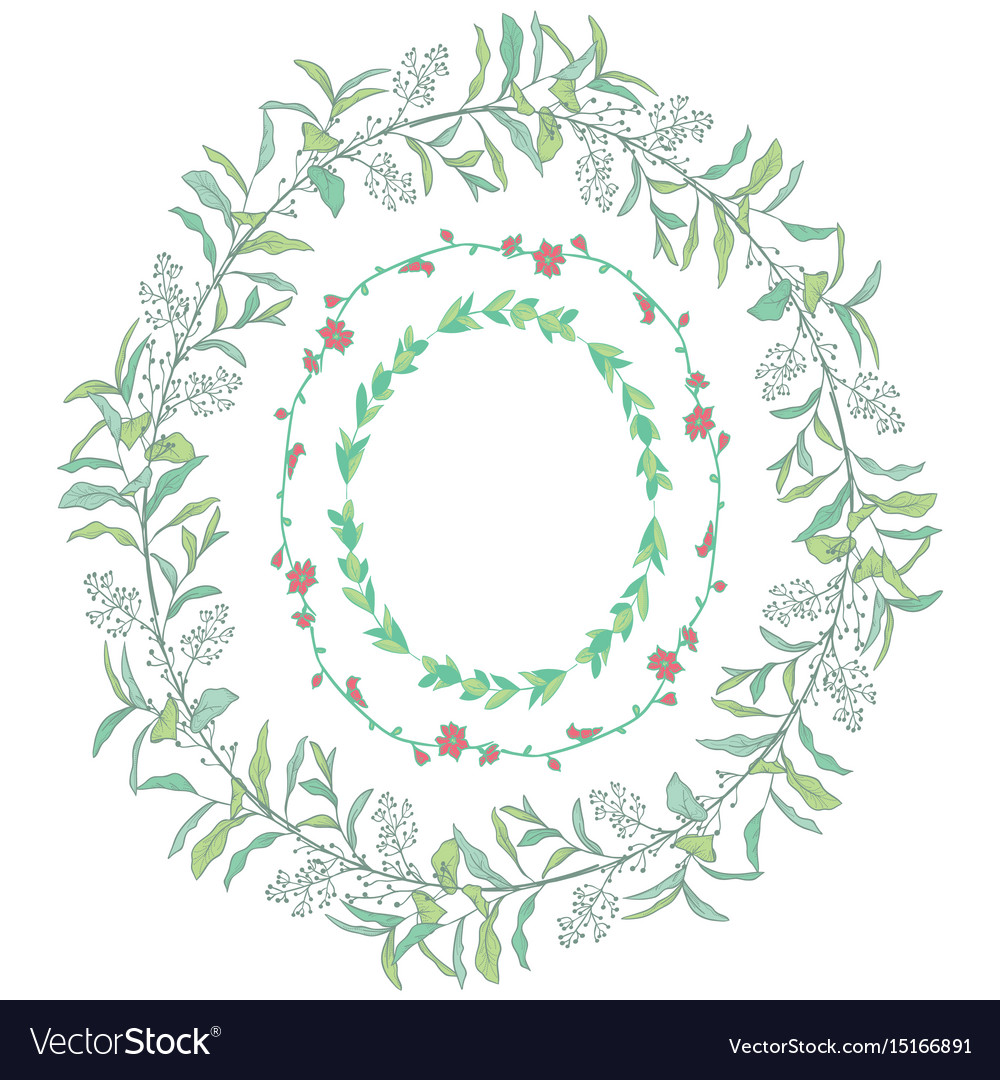 Doodle wreaths with branches herbs plants and vector image
