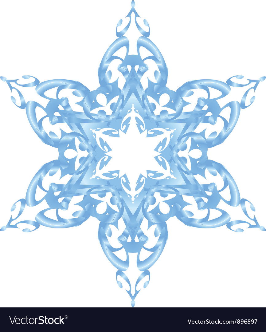 Blue ornate snowflake vector image