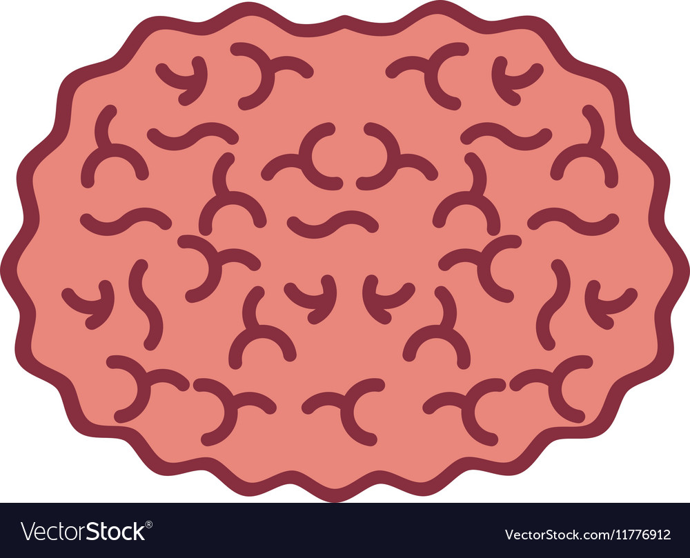 silhouette view top brain in color vector image