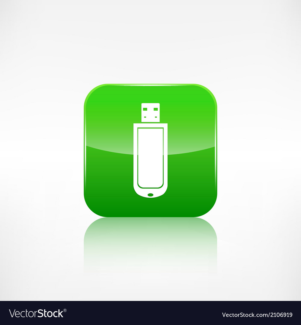 Usb flash drivo web icon Application button vector image