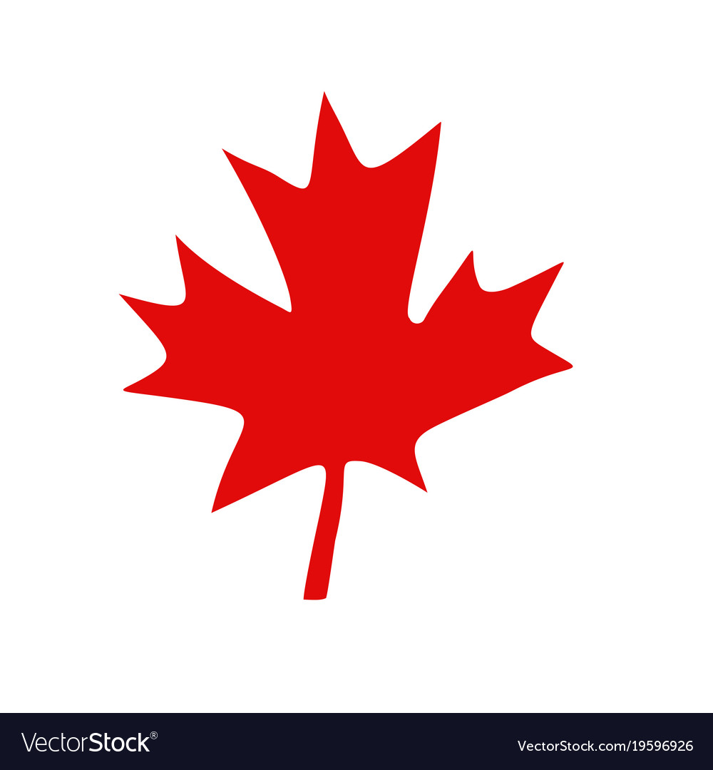 canadian red maple leaf royalty free vector image rh vectorstock com maple leaf vector free download maple leaf vector image