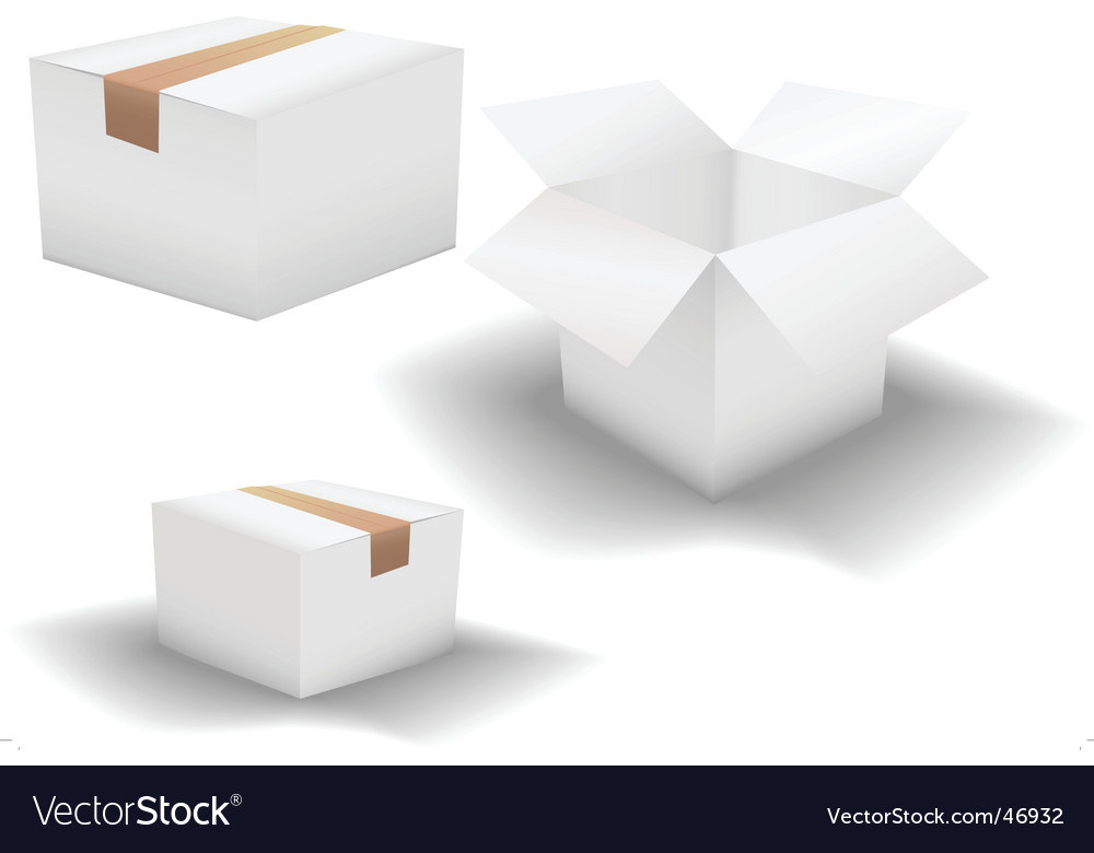 Box variations 3 white boxes vector image