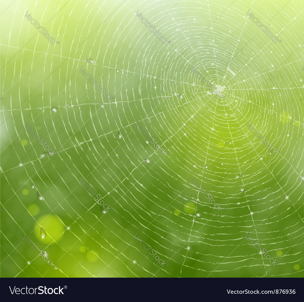 Web of natural background vector image